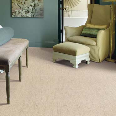 Caress Carpet by Shaw | Galesburg, IL