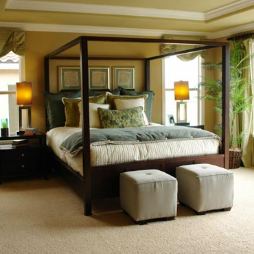 STAINMASTER® Carpet | Galesburg, IL